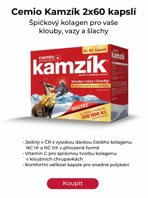 kamzík_vanoce